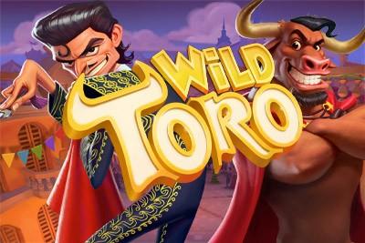 Multi lotto casino Wild 55632